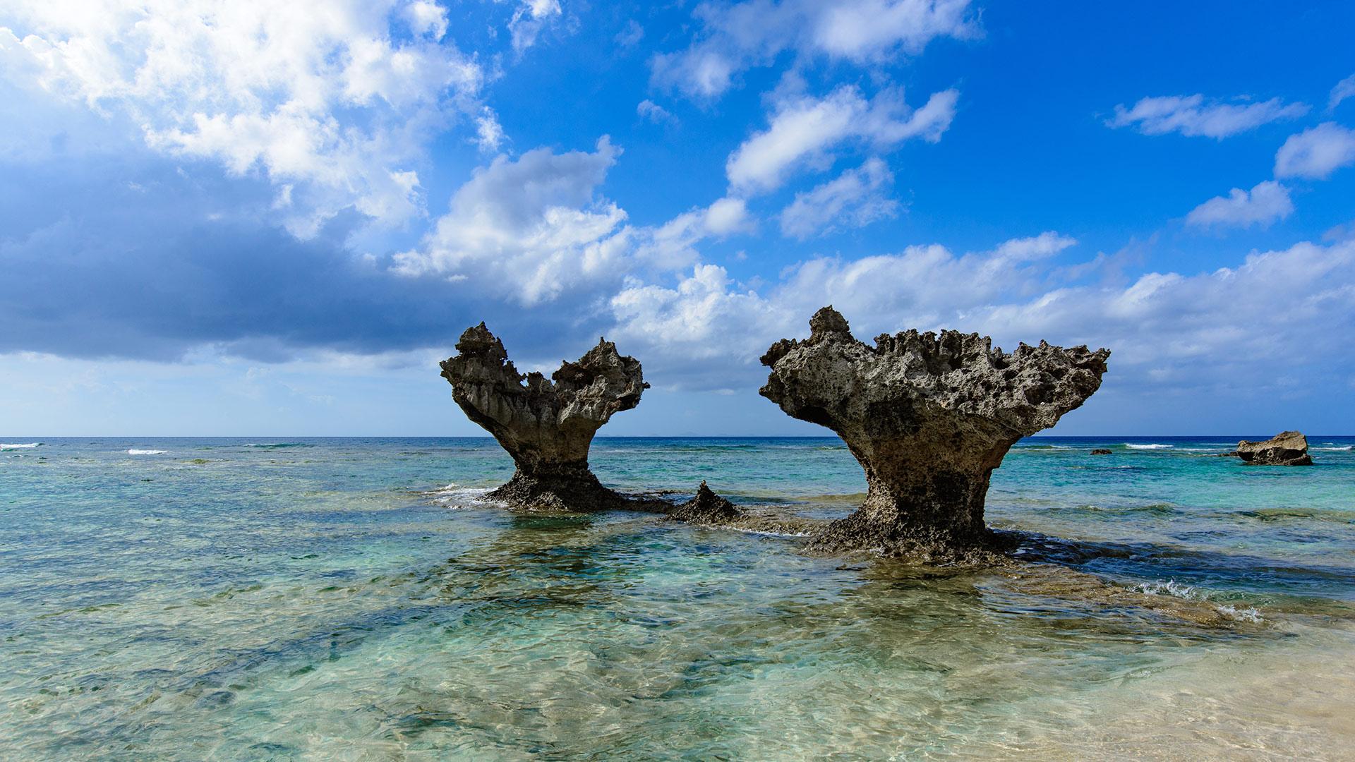 沖縄本島中部・北部Hip-Hop Bus1日ツアー:古宇利島、美ら海水族館、ブセナ海中公園...