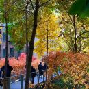 High Line Park and Greenwich Village Food Tour
