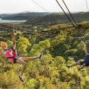 Auckland Shore Excursion: Waiheke Island Tour & Zipline Adventure