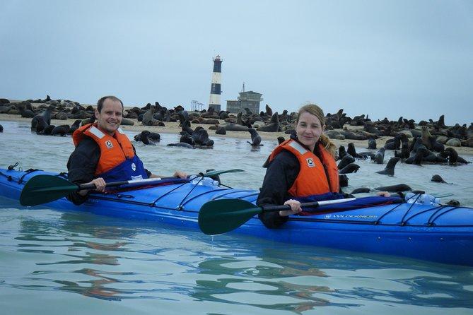 Pelican Point Kayaking Half-Day Tour