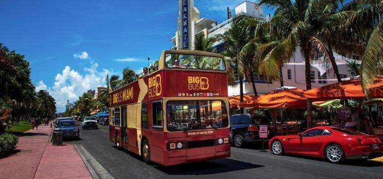 Big Bus Miami3