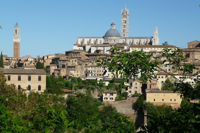 Private Walking Tour: Siena and its Treasures