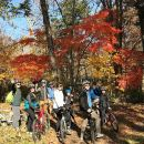 Nopporo Forest Park Mountain Bike Tour from Sapporo