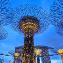 FULL DAY SINGAPORE PRIVATE CITY TOUR WITHOUT TOUR GUIDE