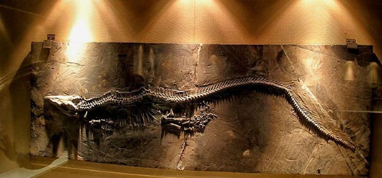 Guizhou Guanling Orictocoenosis National Geopark