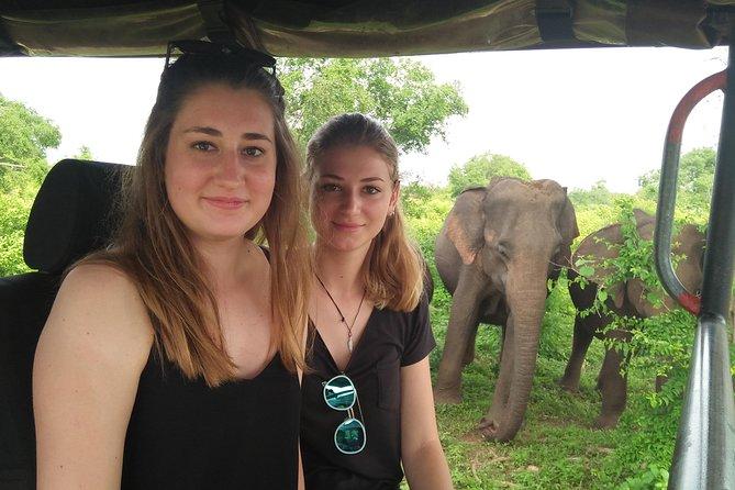 Half A Day Safari Tour in Udawalawe National Park