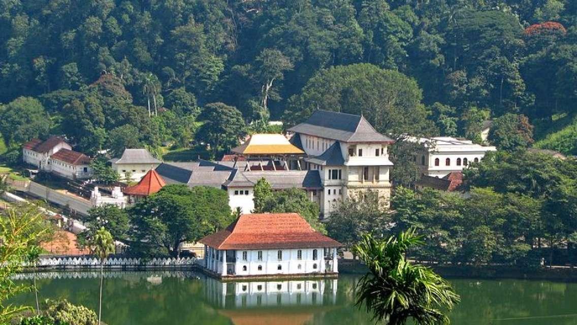 SEX AGENCY in Kandy