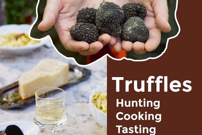 TRUFFLES: Hunting & Cooking & Tasting in Istria, Slovenia