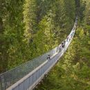 Vancouver Highlights and Capilano Suspension Park Tour - Private Charter (7 hrs)