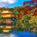 Kyoto One day Trip - Visiting Arashiyama & Kinkakuji , Tea ceremony (option)