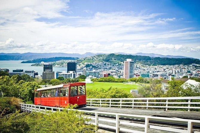 Wellington City Sights and Coast Tour