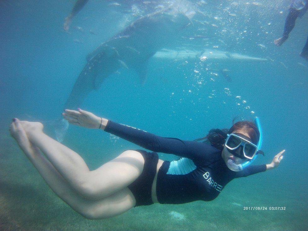 세부 한국인 가이드 동행 오슬럽 고래 상어 가와산 캐녀닝 투어