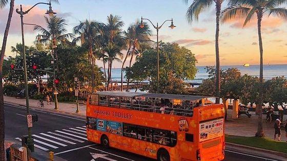 Waikiki Trolley Hop-On Hop-Off Tour of Honolulu
