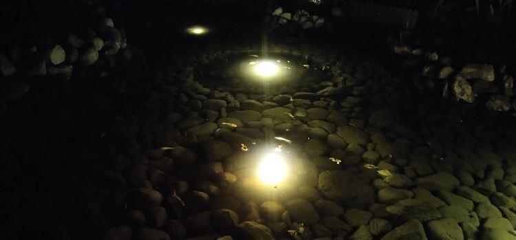 天寶溫泉1