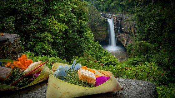 Best of Bali Tour: Waterfall, Heritage, Nature and Temple