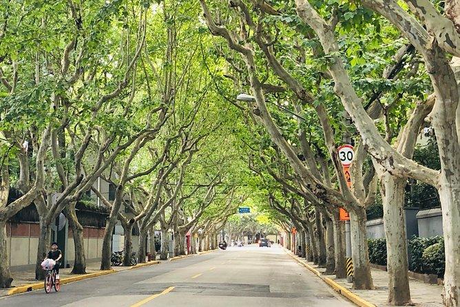 4-Hour Private Shanghai Walking Tour to Fuxing Park, Xintiandi and Taikang Road