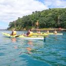 Half-Day Auckland North Head Guided Kayaking Tour
