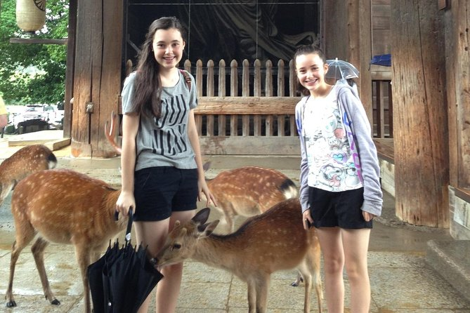 Nara private tour from Osaka (Shore excursion available from Osaka or Kobe port)
