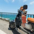 Full day Vespa tour of Naples