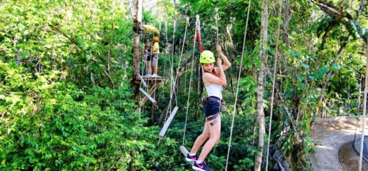 Chocolate Hills Adventure Park3