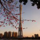 Classic Guangzhou Day Tour [Five Classic Scenic Attractions of Guangzhou]