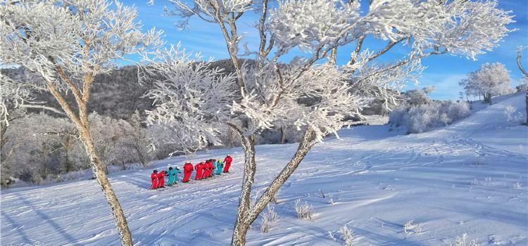 北大壺滑雪場2