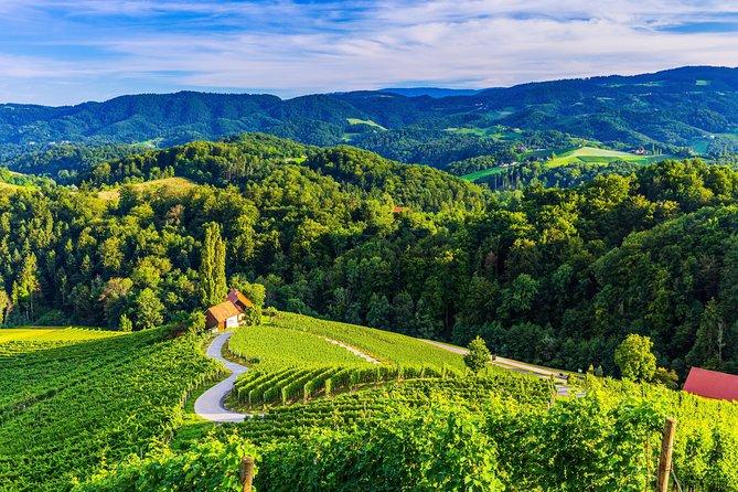 Maribor, Ptuj and Heart of the Vineyards from Ljubljana
