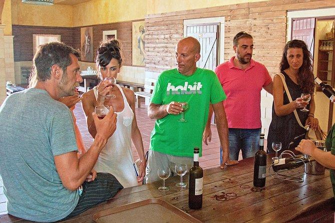 Kefalonia Wine Tour