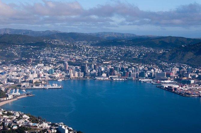 Wellington Shore Excursion City Sightseeing Tour
