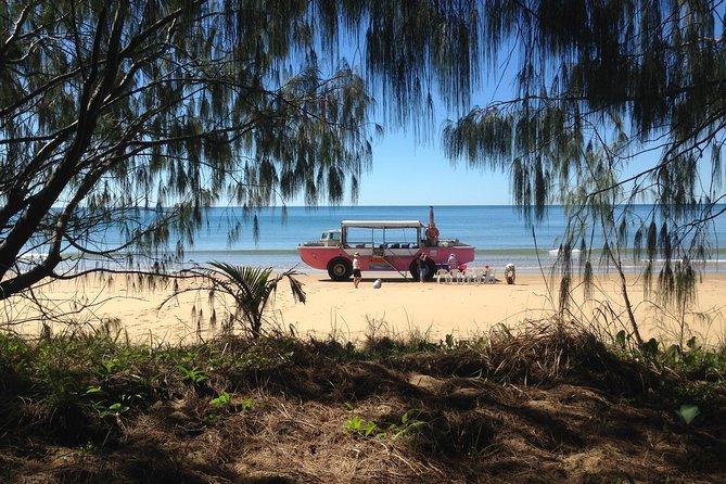 1770 Coastline Tour by LARC Amphibious Vehicle Including Picnic Lunch