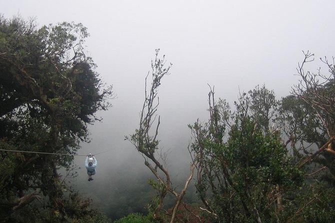 Zipline and Hanging Bridges Combo Tour in Monteverde Cloud Forest