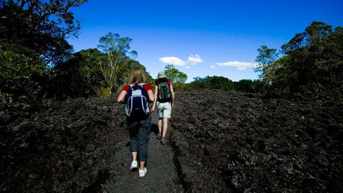 Rangitoto Island Tour from Auckland