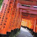 Kyoto Early Bird Tour