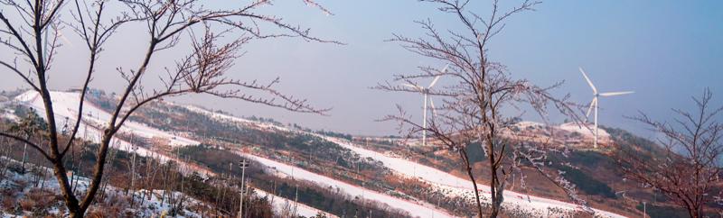 韓國滑雪體驗|大明維瓦爾第度假村 Vivaladi Park 滑雪體驗、南怡島一日遊(首爾出發)