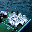 Viet Nam Cham Island Walking Underwater Tour, By Wooden Boat