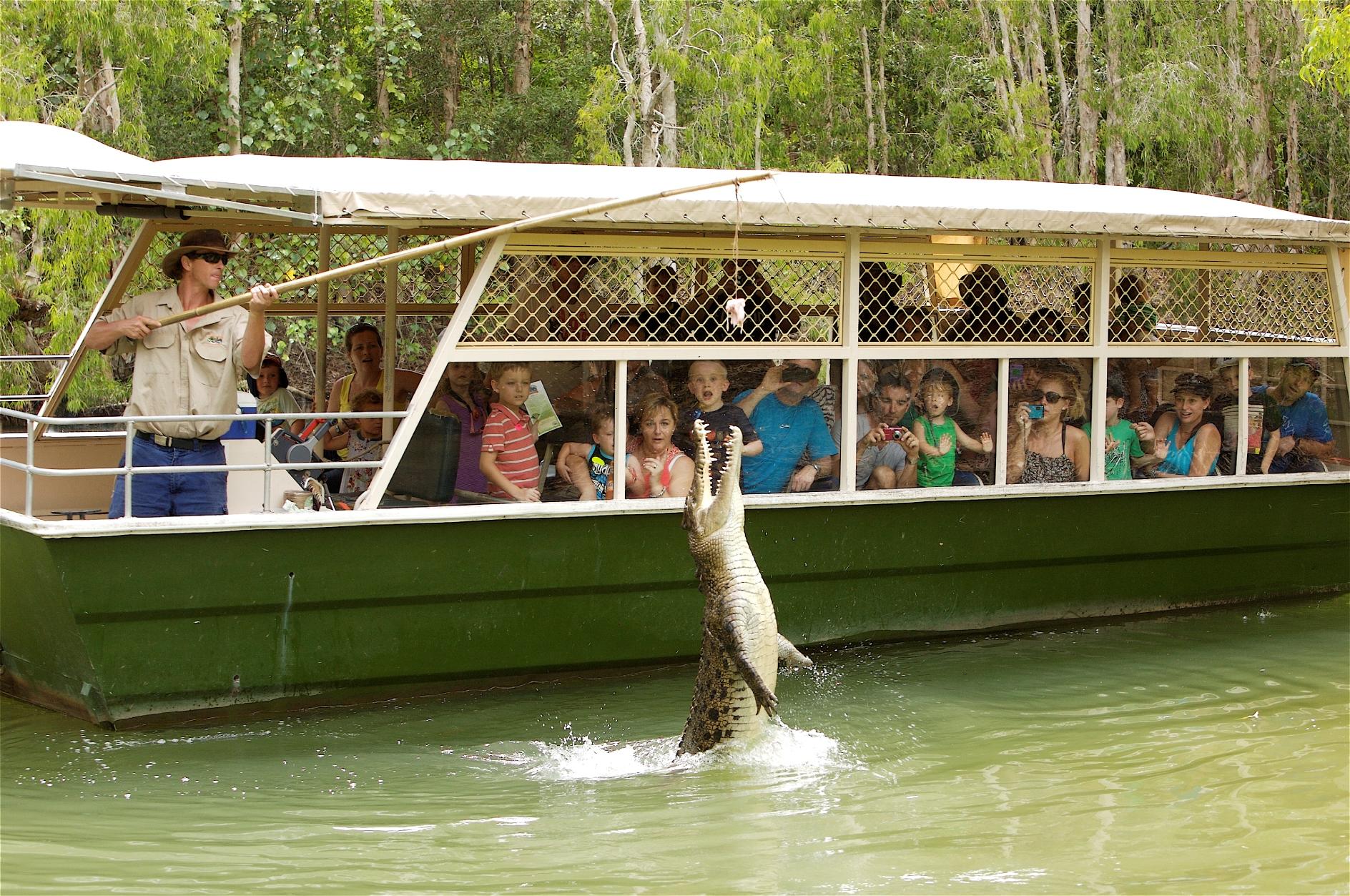 澳大利亞動物園鱷魚探索英文一日遊(黃金海岸/布里斯班出發)