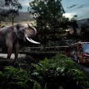 Night Safari Tour in Singapore with Priority Tram Ride