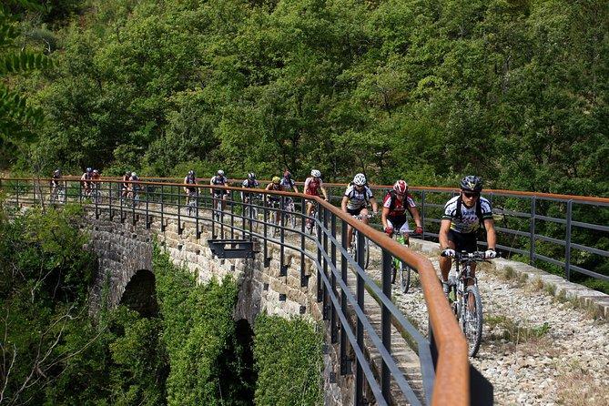 Half-Day Parenzana Trail Mountain Biking Trip