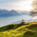 One Day Tour of Rigi