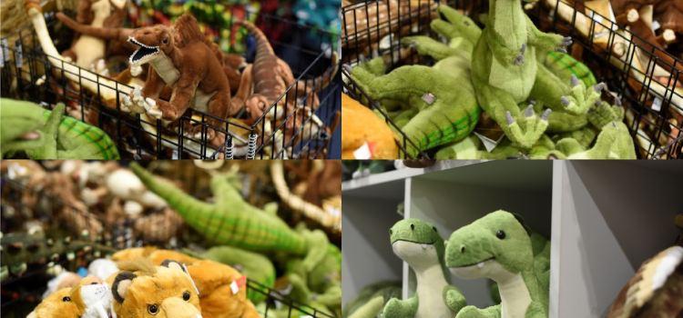 National Dinosaur Museum2