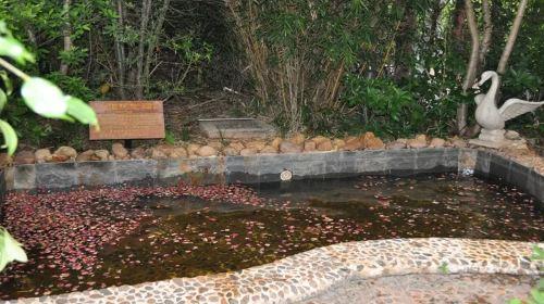 Hongyuan Ecological Hot Spring