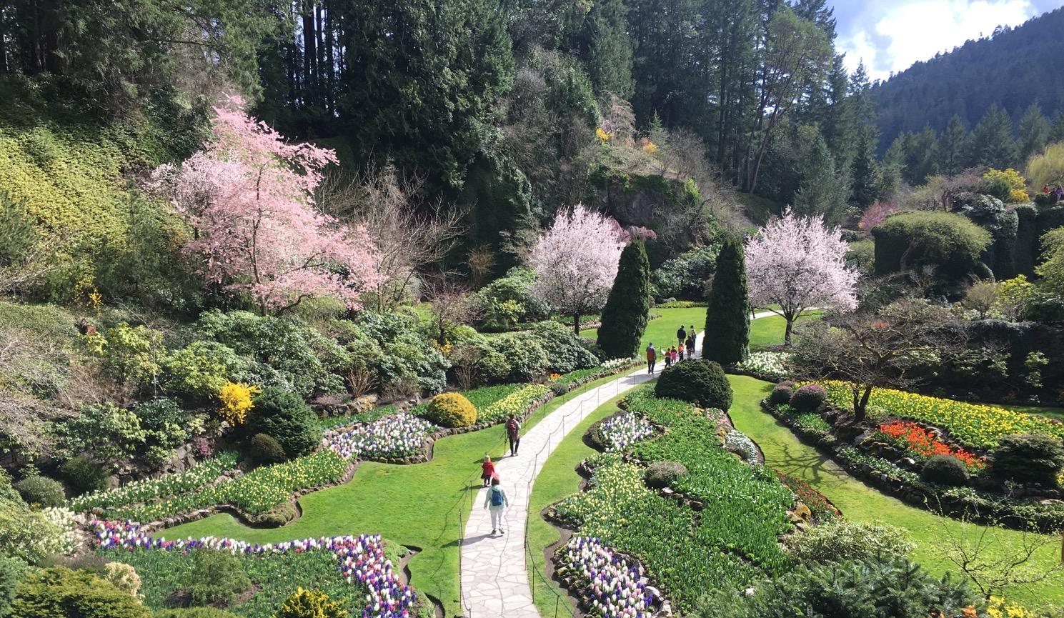 加拿大維多利亞與布查特花園一日遊(全球華人信心保證 包往返渡輪 包花園門票)