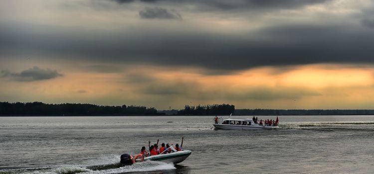 寶應湖國家濕地公園