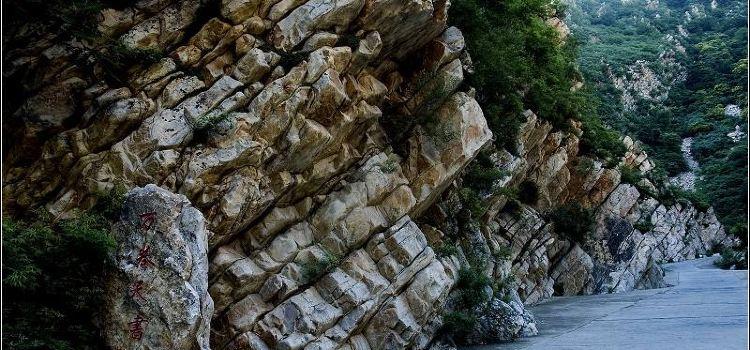 八仙山自然保護区1