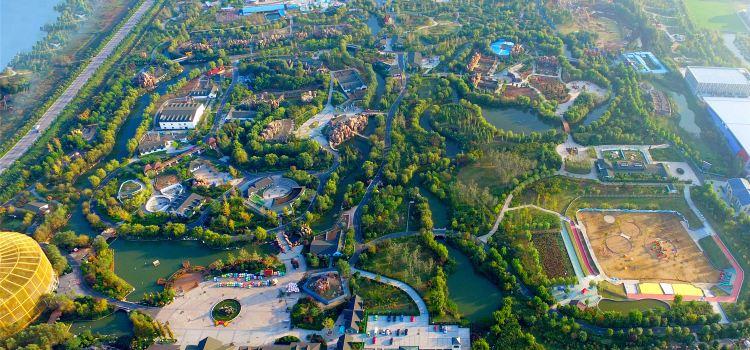臨沂動植物園3