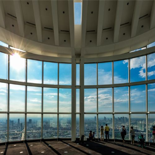 Roppongi Hills Observation Deck Ticket (with Mori Art Museum Admission)