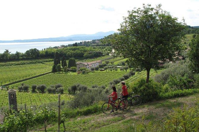 Verona and Lake Garda E-bike Tour