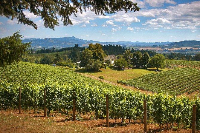 Willamette Valley Wine Tasting from Portland