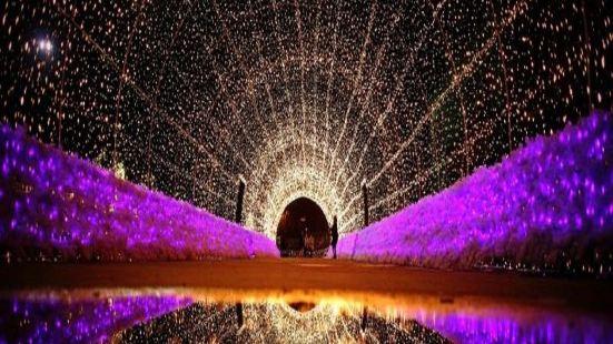 杭州西湖星空藝術館