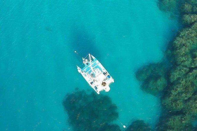 Catamaran, snorkeling & Dunn's River Falls - Private transfer from Montego Bay